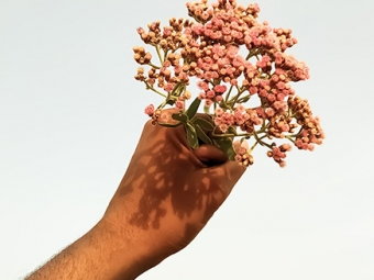Virágot a férfiaknak!